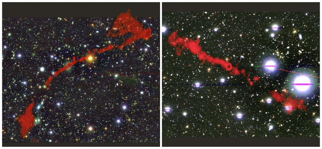 Massive Radio Galaxies Found With MeerKat Telescope