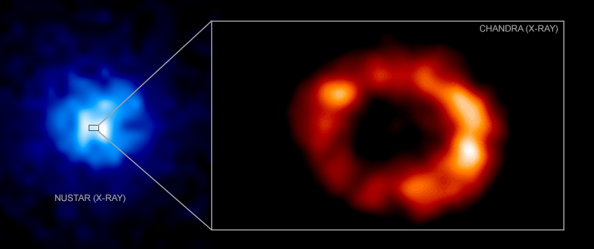 Neutron Star in SN1987A May Have Been Found